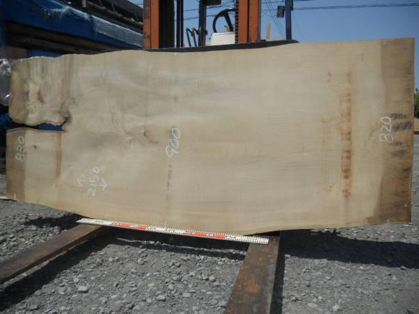 栓一枚板(2150)木表