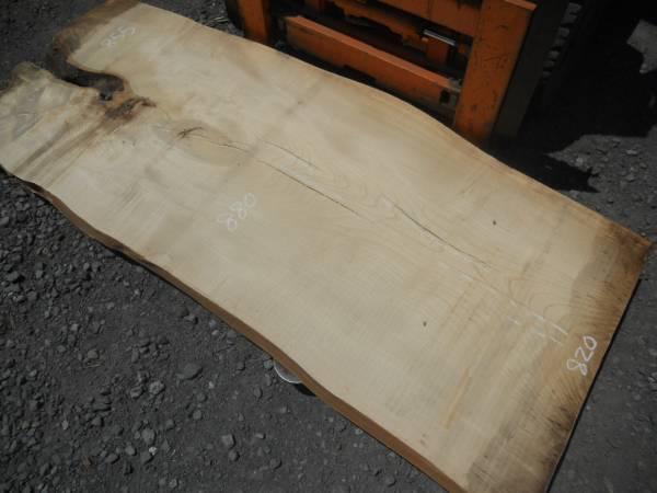 栓一枚板(2150)木裏